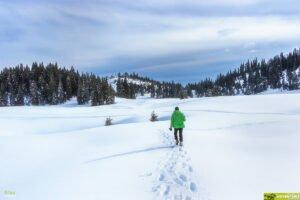 Peisaj de iarna din Poiana Varasoaia