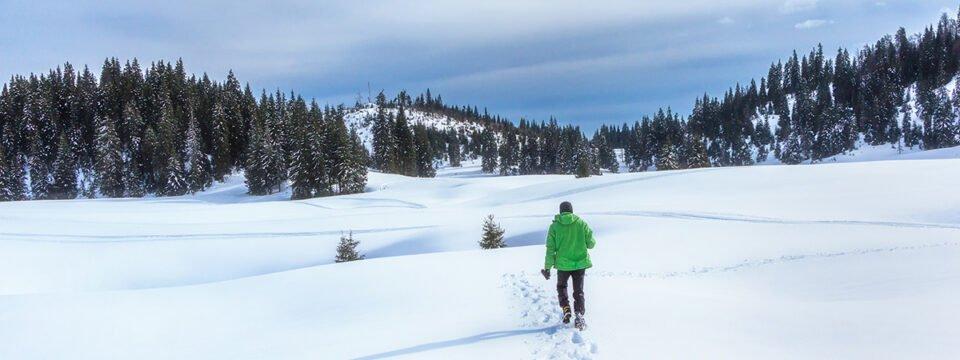 Peisaj de iarnă din Poiana Vărășoaia