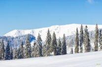 Vedere spre Culmea Cârligate, iarna