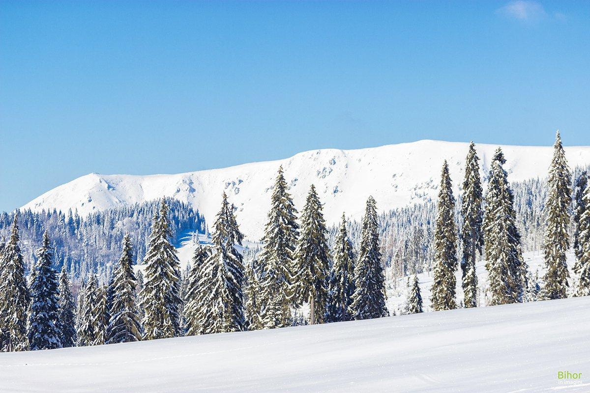 Vedere spre Culmea Carligate iarna