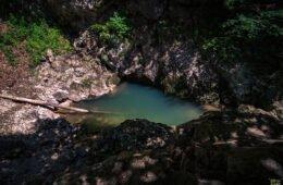 Galbena emergence – a calm water eye
