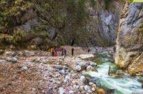 Tracking pe Valea Galbena