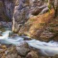 Valea Galbena