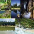 Lista ariilor protejate din Bihor
